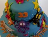 cakes-to-celebrate12.jpg