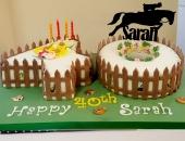 cakes-to-celebrate_Nov_40
