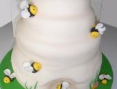 cakes-to-celebrate_birthday.jpg